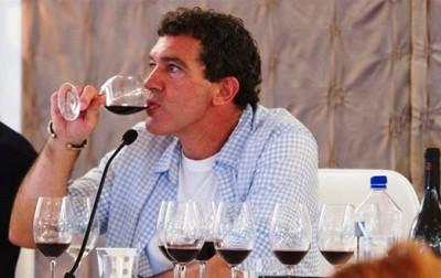5.vinoteca