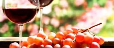 6.vinoteca