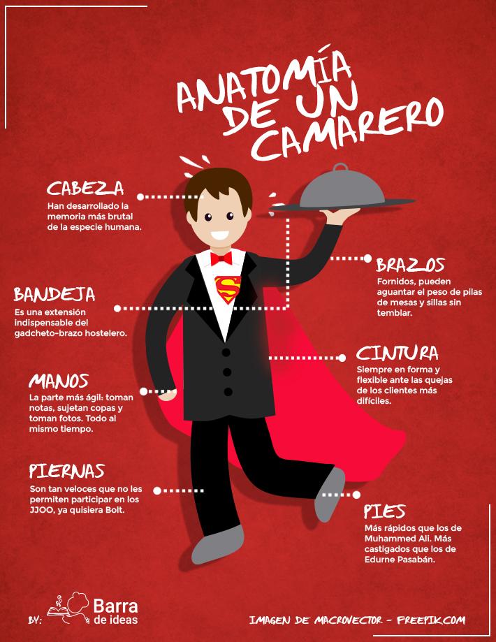 infografia_anatomia_camarero2